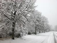 Drive_safely_in_the_winter_and_snow_with_your_automobile_covered_by_auto_insurance_Andrew_gordon_inc.jpg