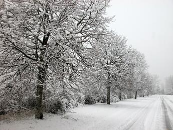 Drive safely in the winter and snow with your automobile covered by auto insurance Andrew gordon inc