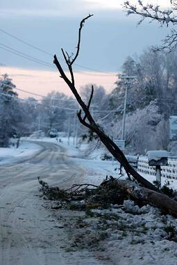 Insure yourself for blizzard damage with homeowners from andrew gordon inc