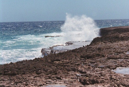 Aruba waves