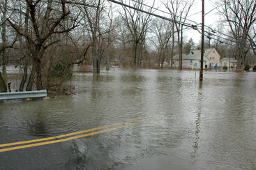 flood_pic.jpg