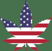 US Cannabis Leaf Pic