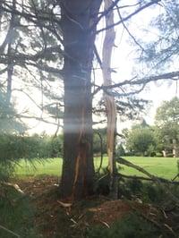protect_your_home_against_lightning_Andrew_G_Gordan_Inc_Insurance-052476-edited